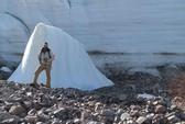 Hồi sinh thực vật bị vùi dưới băng hơn 400 năm