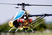 Trung Quốc cấm máy bay đồ chơi trước đại hội đảng
