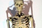 Phát hiện bộ xương người nằm trên giường 15 năm