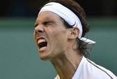 Nadal lại rút khỏi giải Abu Dhabi vì bệnh