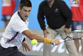 Djokovic bị người hâm mộ gây chấn thương