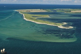 Hòn đảo mới đột ngột ngoi lên ở Đức