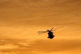 Trực thăng vướng dây điện, phi công tử vong