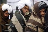 Taliban sẵn sàng đàm phán hòa bình với Chính phủ