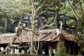 Cháy rụi Đền thờ Lê Lai ở Lam Kinh