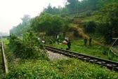 Người đàn ông chết cứng bên đường sắt Bắc - Nam