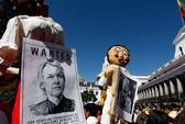 """Ecuador: Bố ráp sứ quán bắt Assange là """"tự sát"""""""