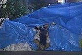 Phát hiện 3 tử thi thối rữa trong nhà hoang