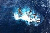 """Tàu trong """"Cướp biển Caribbean"""" gặp nạn vì bão Sandy"""