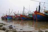 """Ngư dân Thanh Hóa làm """"chui"""" trên tàu cá Trung Quốc"""