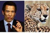 Tổng thống Botswana bị báo cào vào mặt