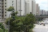 Singapore phát triển đô thị sinh thái