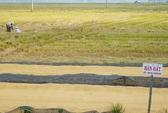 Khai phóng đồng bằng sông Cửu Long: Nông dân làm nhiều, hưởng ít