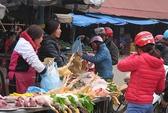 Hơn 120 triệu USD chống cúm A/H7N9