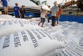 Gạo Việt trước thách thức lớn