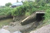 Dời KCN cứu sông Đồng Nai