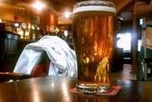 Bia không làm say xỉn