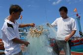 Ngư dân bị Trung Quốc đập phá tàu cá: Đứng dậy vươn khơi