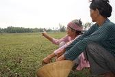 Nông dân… chán ruộng
