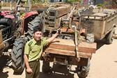 """Vụ """"Lâm tặc đào tẩu trước mắt… kiểm lâm"""": UBND tỉnh Ninh Thuận chỉ đạo làm rõ"""