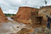 Một thủy điện, mất hơn 59 ha rừng