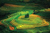 Lào Cai mùa nào cũng đẹp