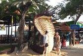 Rắn khổng lồ làm từ 2013 mảnh thân và bẹ dừa khô