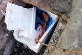 Xác hài nhi bỏ trong thùng xốp ven đường
