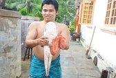 Tát đìa, bắt được cá lóc 5,2 kg