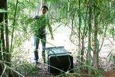 Phát hiện một két sắt trong vườn tre