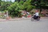 Thai nhi 7 tháng tuổi bị vứt bên đường