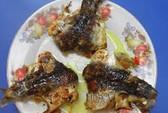 Nhớ món cá chuồn nướng gập