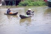 Mùa cá linh trên sông Ô Môn