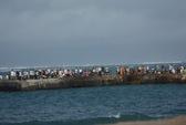 Đi dạo trên cầu cảng, bị sóng biển cuốn trôi