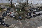 Thoát chết kỳ diệu từ cơn bão Haiyan