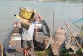Qua Campuchia săn cá