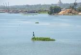 Sông Đồng Nai bị ô nhiễm nặng