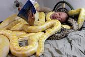 Gần gũi với rắn!