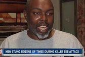 """100.000 con ong """"sát thủ"""" tấn công 2 người ở Mỹ"""