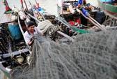 Đông Á chuẩn bị đón siêu bão Usagi