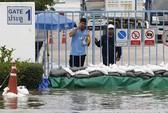 Thái Lan: 17 nhà máy đóng cửa vì ngập nặng