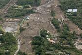 Nhật Bản: 17 người chết, 50 người mất tích vì bão