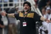 Iraq từ chối Maradona