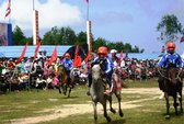 """Cười """"vỡ bụng"""" ở hội đua ngựa Phú Yên"""