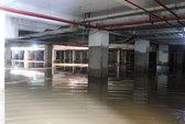 """Tầng hầm chung cư thành """"biển nước"""", hàng trăm cư dân khốn khổ"""