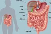 Tư vấn về rối loạn tiêu hóa
