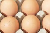 Trẻ nhỏ nên ăn mỗi ngày một quả trứng