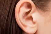 Bệnh lạ: Nghe mọi âm thanh trừ tiếng nói