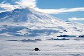 Núi lửa hoạt động mạnh mẽ dưới thềm băng