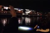 Sinh vật bí ẩn phát sáng ở cảng biển